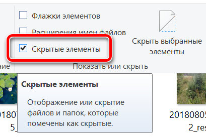 Включение скрытых элементов в проводнике Windows 10