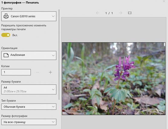 Запуск печати изображения из приложения «Фотографии»