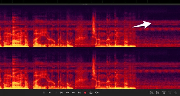 Поиска шума с помощью спектральной визуализации звука