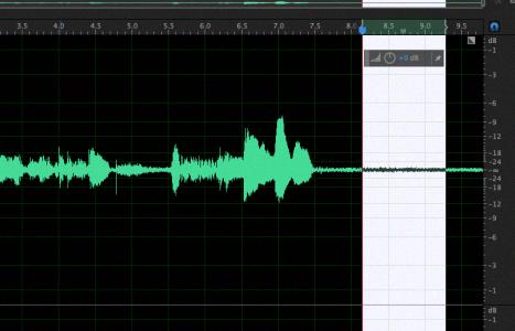 Получим образец шума в Adobe Audition