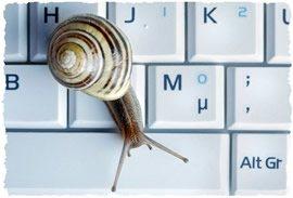 Улитка, ползущая по клавиатуре ноутбука