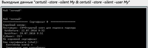 Выходные данные для CertUtil store silent My