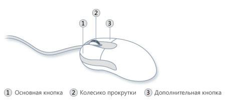 Основные кнопки на компьютерной мыши