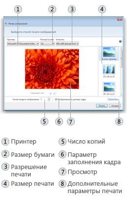 Диалоговое окно «Печать изображений» в системе Windows