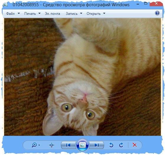 обновить средство просмотра изображений windows 7