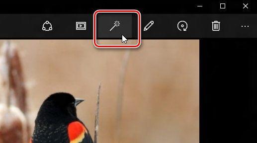 Кнопка улучшения изображения в приложении Фотографии Windows 10